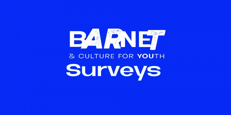 Text reads Barnet and Culture for youth Surveys, it's white text on a blue background