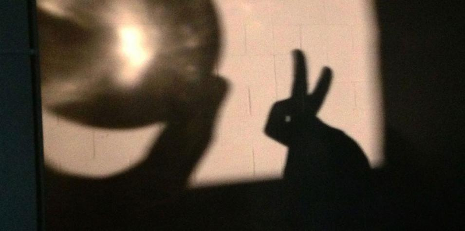 A photo of a projection of a rabbit shadow puppet looking at a glowing sphere.