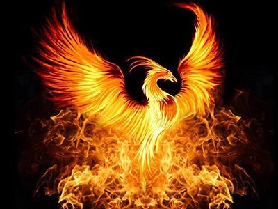 A firey phoenix against a black background