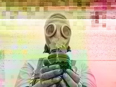 A figure wearing a gas mask, which entirely covers their face, is holding a small plant towards the camera. The images in the picture are strange, like it has been badly developed.