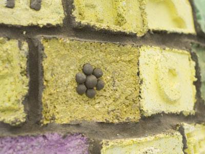 Close-Up of the Storytelling Igloo bricks