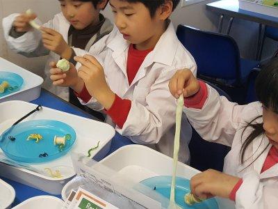 3 children take part in a science experiement